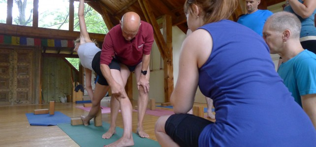 Becoming an Iyengar Yoga Teacher