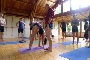 Becoming an Iyengar Yoga Teacher - Iyengar Yoga with Alaric