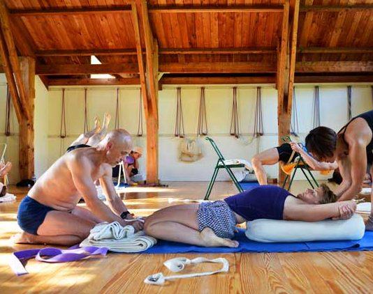 Belfast Workshop linking Asana to Pranayama – Iyengar Yoga